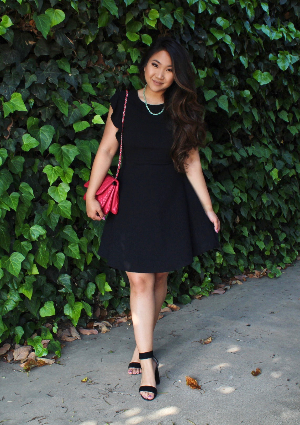 Flutter Sleeve Flare Dress
